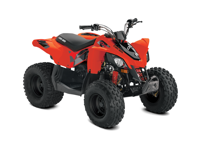 Can-Am DS 90 2021